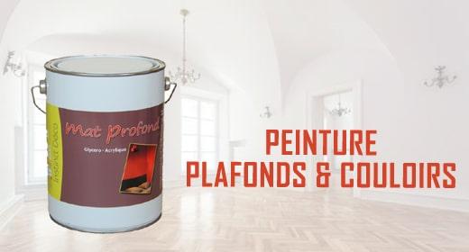 achat peinture en ligne resine de protection pour peinture. Black Bedroom Furniture Sets. Home Design Ideas
