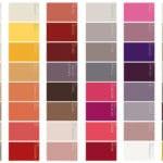 Nuancier de couleur peinture