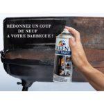 Peinture barbecue