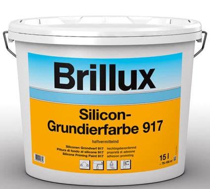 peinture silicone