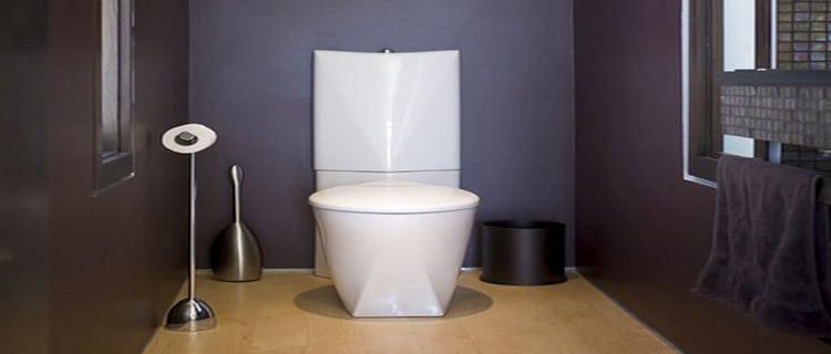 toilette peinture